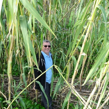 Marco in the bamboo!!!!