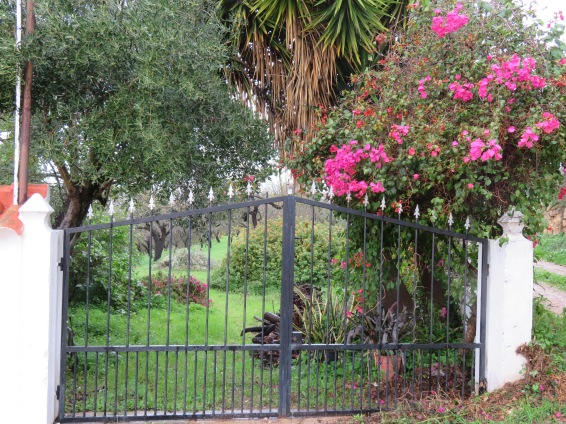 This is the gate right beside our driveway.