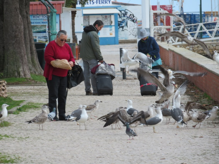 This woman was feeding the gulls, midair! She was surrounded by them and probably covered in shit by the time all was said and done!