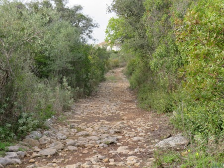 This is the ancient Roman Road I mentioned earlier.......I get cold shivers when I am walking on something like this and think about all that has gone down it before me.