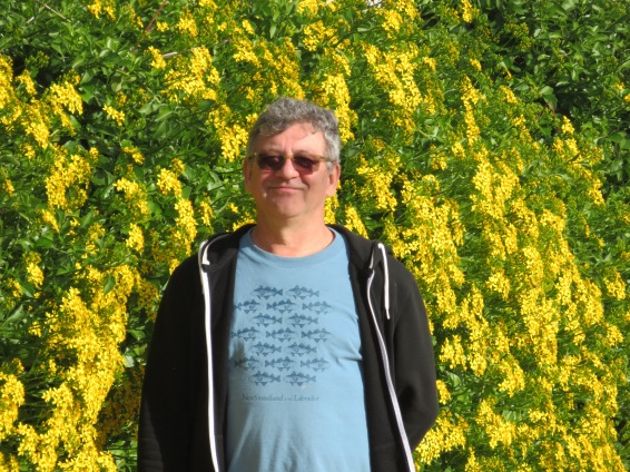 A happy man at a wall of gorgeous yellow blooms.....see our featured photo of the day for detail.