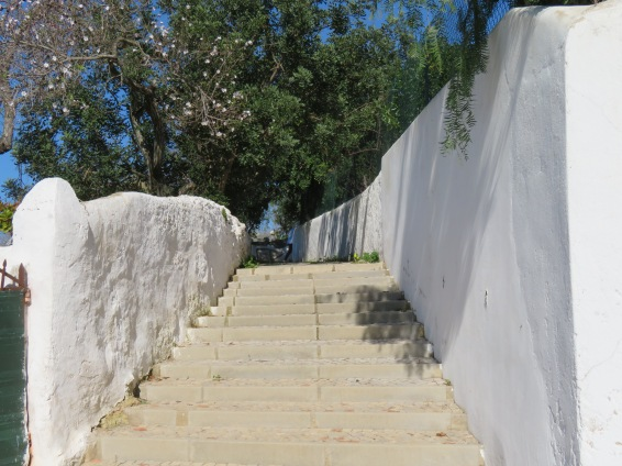 The steps going up to our apartment, right across from the main doors of the pousada.