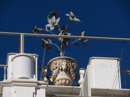 This style of pot and flower is displayed all over Seville, I am trying to find out the background
