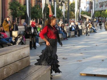 Flamenco dancer, wonderful to watch.