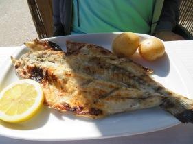 Marc enjoyed fresh sea bass
