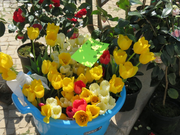 This large container of tulips simply made me smile......for you Beverly
