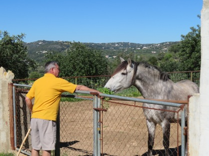 The Old Gray Mare.......loved her treats that Marc picked for her.