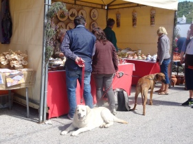 Even the pooches get to enjoy the markets.
