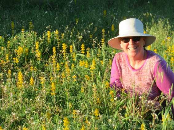 Patricia in the Lupins........