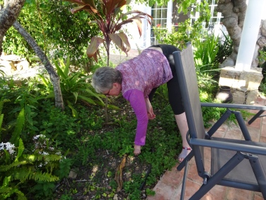 Patricia doing some gardening.....she can't help herself.......she sees a weed, she weeds!!