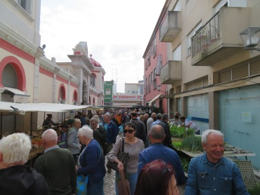This was only one tiny ruelle in the market area and each was packed like this or more.