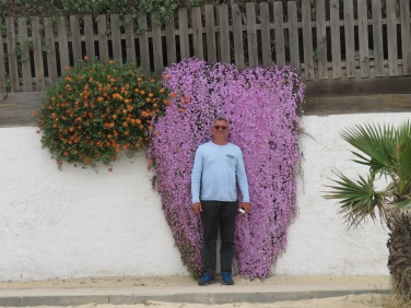 This should give you a good idea of the size of this patch of purple flowers.