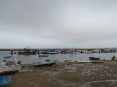 Many of the boats have docked for the day.